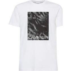 Textil Muži Trička s krátkým rukávem Calvin Klein Jeans K10K106714 Bílý
