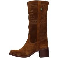 Boty Ženy Kozačky Dakota Boots C5 Hnědá