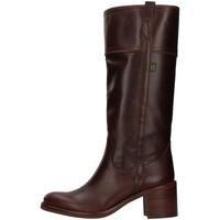 Boty Ženy Kozačky Dakota Boots C11 Hnědá