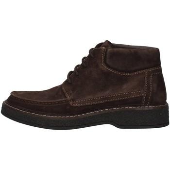 Boty Muži Kotníkové boty IgI&CO 8113322 Hnědá