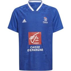 Textil Děti Trička s krátkým rukávem adidas Originals Maillot domcile enfant France 2021/22 bleu marine/bleu royal/blanc