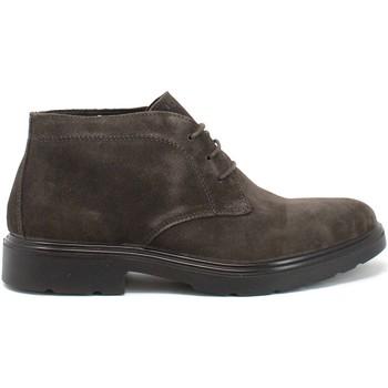 Boty Muži Kotníkové boty IgI&CO 8100444 Hnědý
