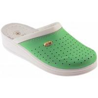 Boty Muži Pantofle Sanital  Zelená