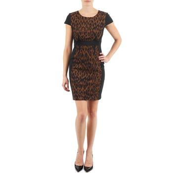 Textil Ženy Krátké šaty Manoukian EMMA Černá