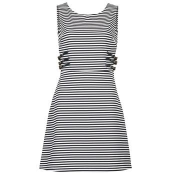 Textil Ženy Krátké šaty Morgan RMARI Tmavě modrá / Krémově bílá