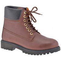 Boty Muži Kotníkové boty Lumberjack  Hnědá