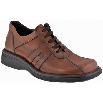 Boty Muži Kotníkové boty Nicola Barbato  Béžová