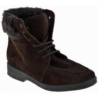 Boty Ženy Zimní boty Valleverde  Hnědá