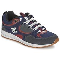 Boty Muži Skejťácké boty DC Shoes KALIS LITE Tmavě modrá / Šedá