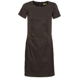 Textil Ženy Krátké šaty Lola REDAC DELSON Černá