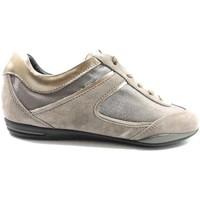 Boty Ženy Nízké tenisky Tod's sneakers beige camoscio bronze az570 Beige