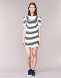 Textil Ženy Krátké šaty Loreak Mendian HAMABI Tmavě modrá / Bílá