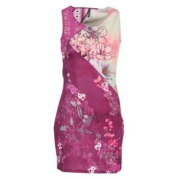 Textil Ženy Krátké šaty Smash GRETCHEN Růžová