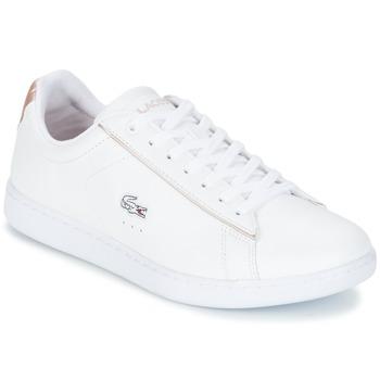 Boty Ženy Nízké tenisky Lacoste CARNABY EVO 217 2 Bílá / Růžová