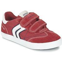Boty Chlapecké Nízké tenisky Geox J KIWI B. M Červená / Tmavě modrá