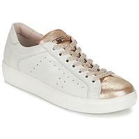 Boty Ženy Nízké tenisky Tosca Blu  Bílá / Zlatá