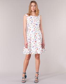 Textil Ženy Krátké šaty Derhy MAESTRIA Bílá