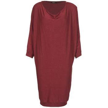 Textil Ženy Krátké šaty Kookaï BLANDI Bordó