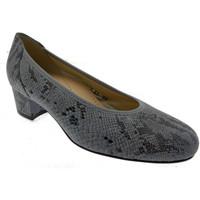 Boty Ženy Lodičky Calzaturificio Loren LO60713gr grigio
