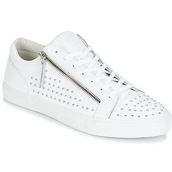 Boty Muži Nízké tenisky Jim Rickey ZED STUDS Bílá / Stříbřitá