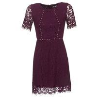 Textil Ženy Krátké šaty Morgan ROUJEL Bordó