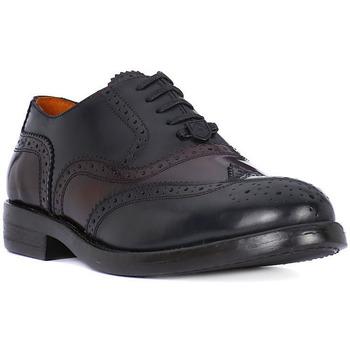 Boty Muži Šněrovací společenská obuv Ambitious AMBITIUS ALLACCIATA BORDO Rosso