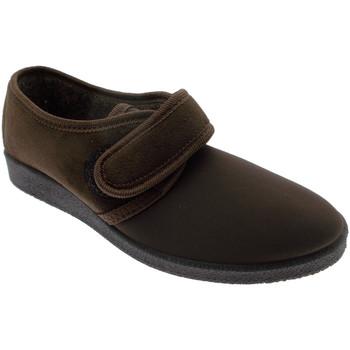 Boty Ženy Papuče Davema DAV392ma marrone