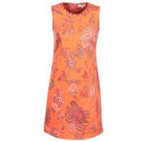 Textil Ženy Krátké šaty Derhy ANTILLAIGAN Oranžová