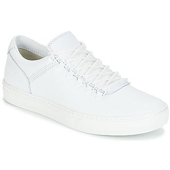 Boty Muži Kotníkové boty Timberland ADVENTURE2.0 CUPSOLE Bílá