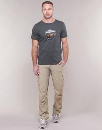 Textil Muži Cargo trousers  Columbia SILVER RIDGE II CARGO PANT Béžová