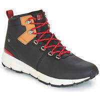 Boty Muži Nízké tenisky DC Shoes MUIRLAND LX M BOOT XKCK Černá / Červená
