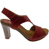 Boty Ženy Sandály Calzaturificio Loren LOJ0833ne nero