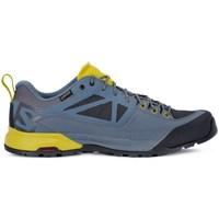 Boty Muži Nízké tenisky Salomon X Alp Spry Gtx Modré, Žluté