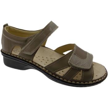 Boty Ženy Sandály Calzaturificio Loren LOM2524to tortora