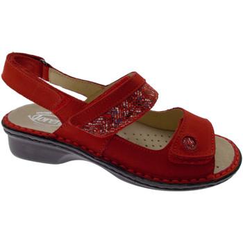Boty Ženy Sandály Calzaturificio Loren LOM2716ro rosso
