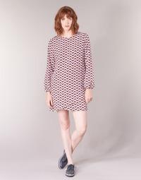 Textil Ženy Krátké šaty Pepe jeans TRUDY Modrá / Bílá / Červená