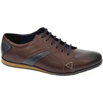 Boty Muži Šněrovací polobotky  & Šněrovací společenská obuv Iguana Pánske hnedé poltopánky CALAPS hnedá