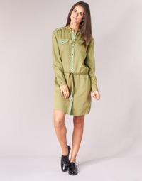 Textil Ženy Krátké šaty Scotch & Soda JULIENAS Khaki