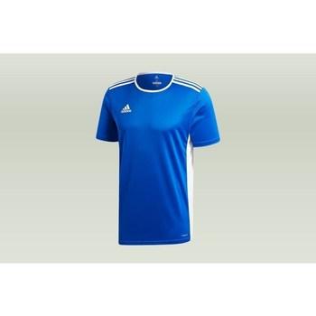 Textil Muži Trička s krátkým rukávem adidas Originals Entrada 18 Modrá