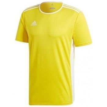 Textil Muži Trička s krátkým rukávem adidas Originals Entrada 18 Jsy Žlutá